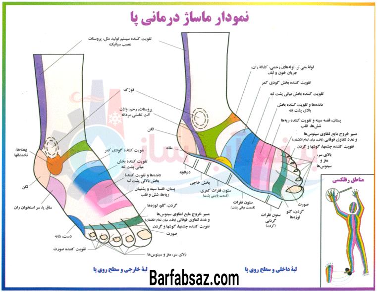 نمودار ماساژ درمانی روی پا